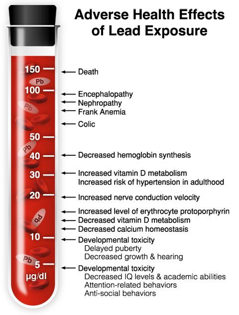 adult lead blood levels